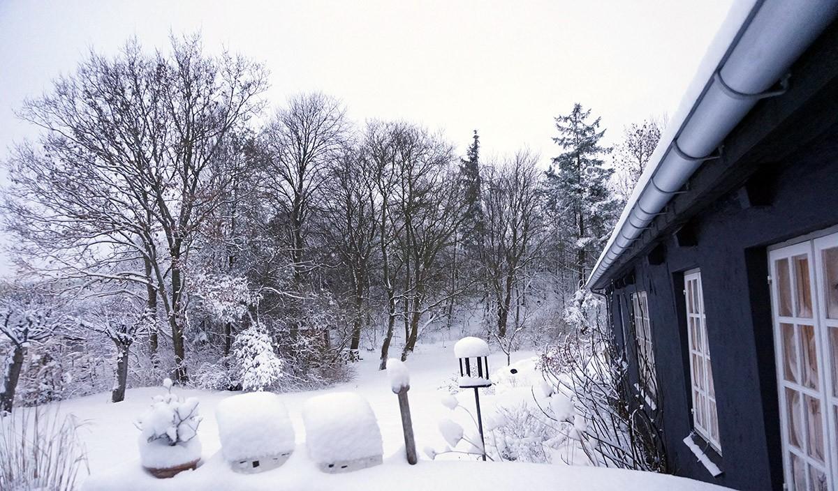 vinter uden sne